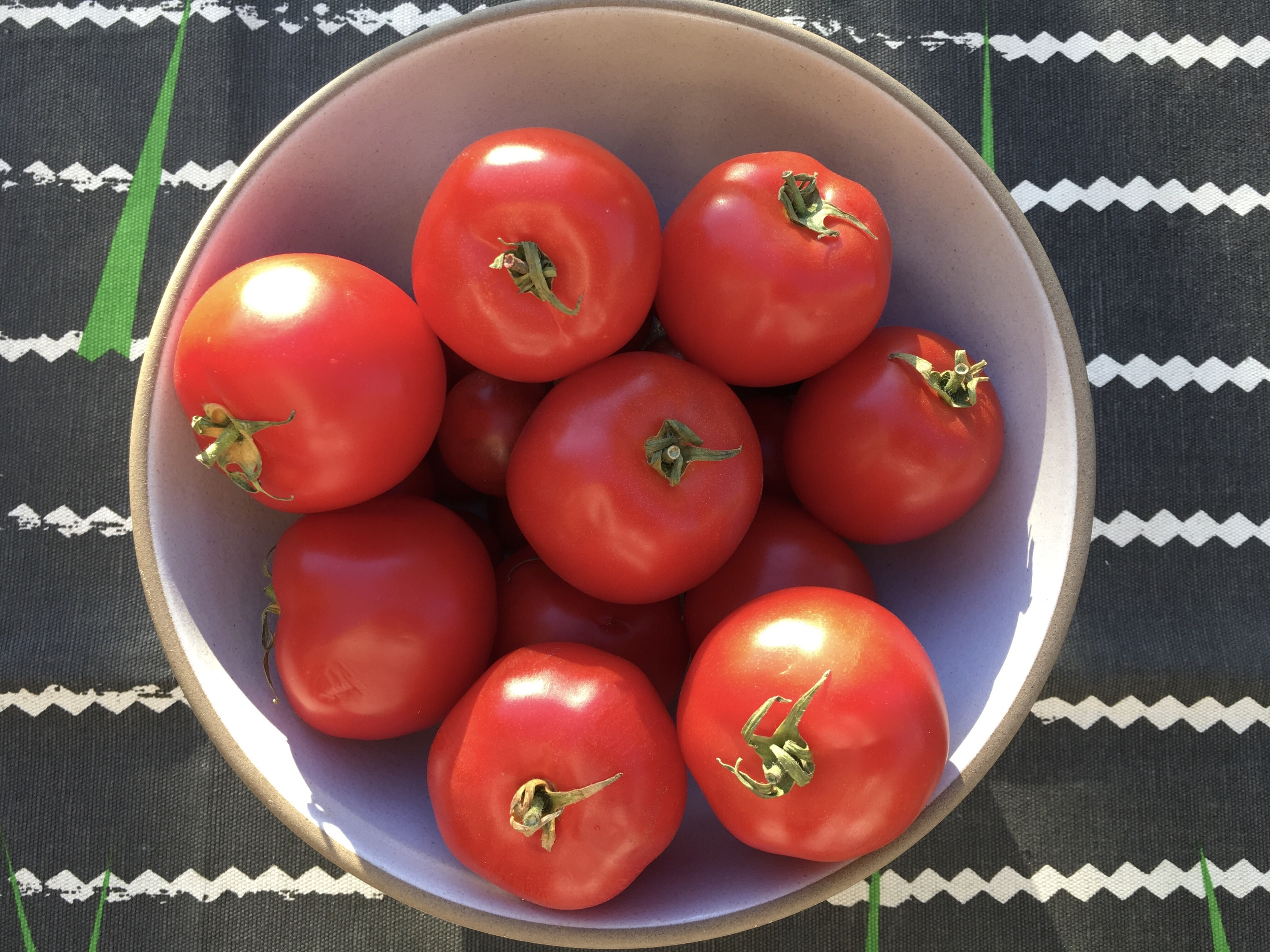 Early Girl Tomatoes from Dirty Girl Produce