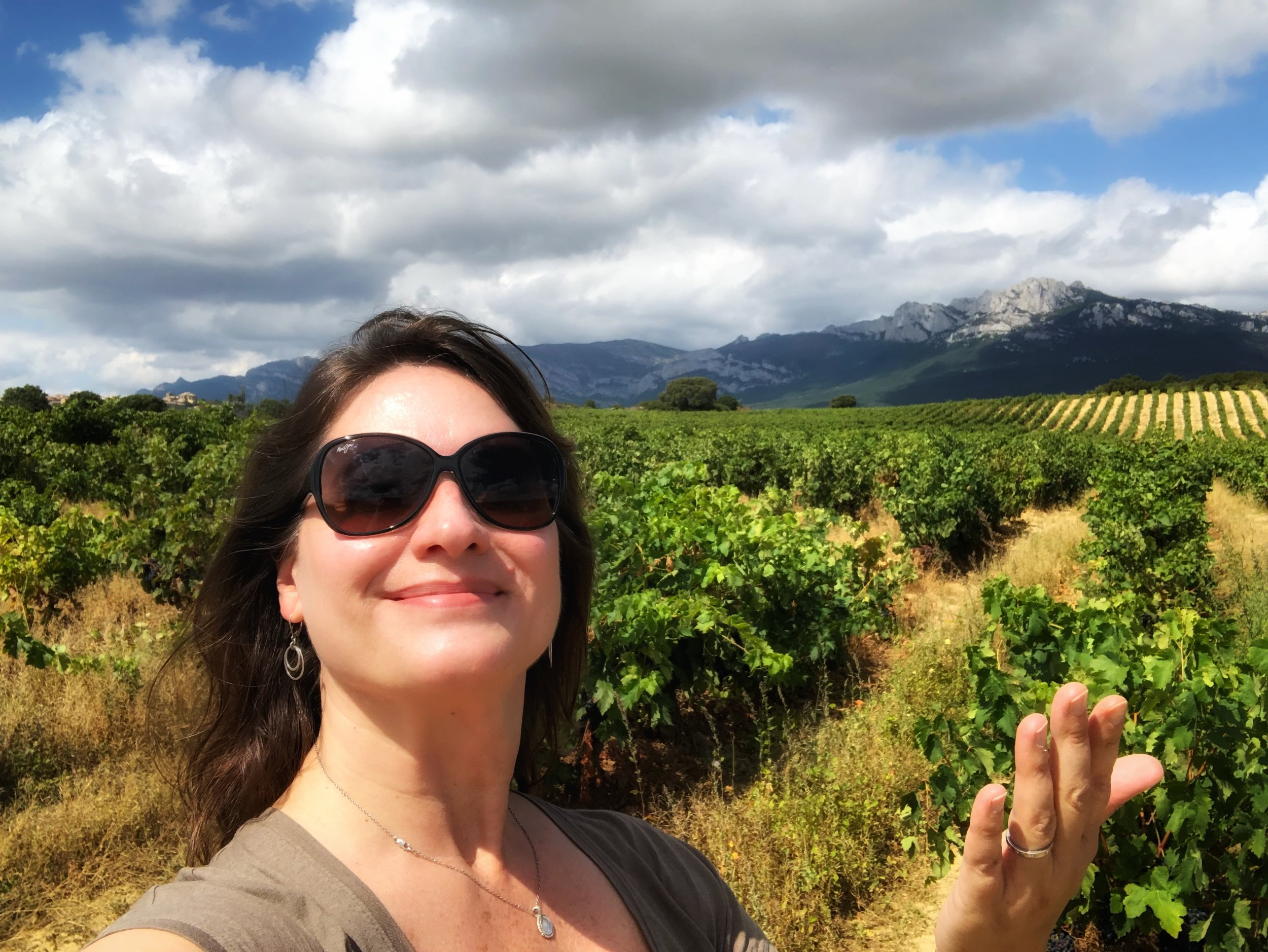 Blissing out in Rioja Alavesa, Spain