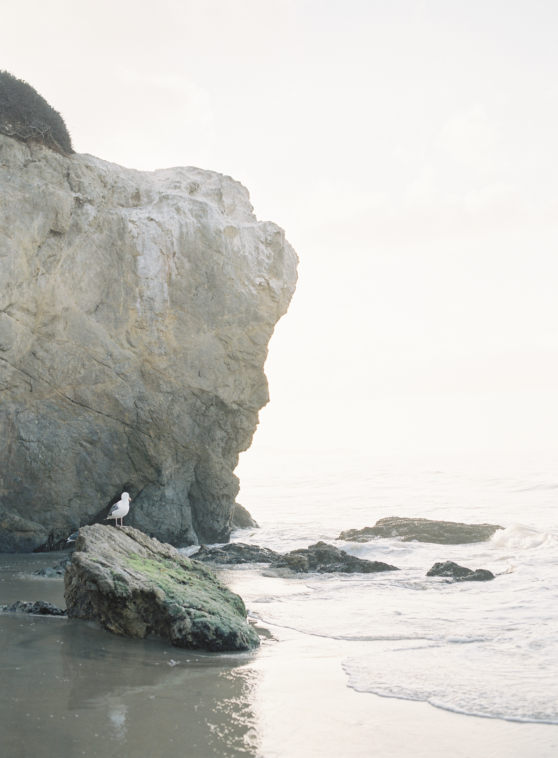 Charlotta - El Matador Beach Malibu - Peaches & Twine Fine Art Film Photography -75.jpg