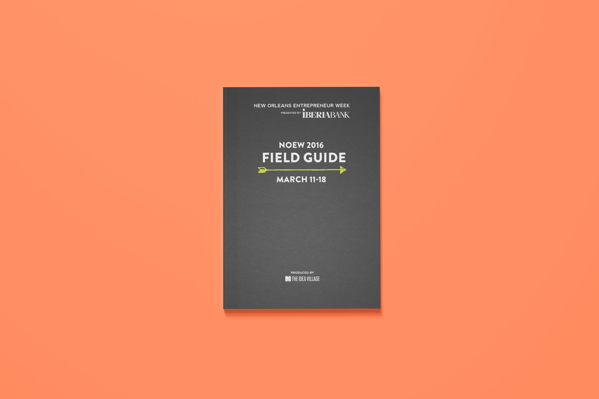 reba-joy-billips-noew-field-guide-cover.jpg