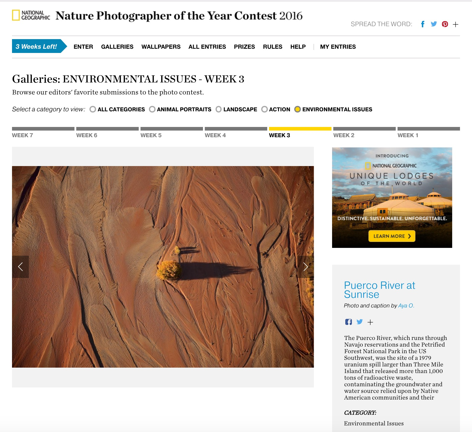 National Geographic Nature Photographer of the Year Editors Favorite Puerco River Sunrise Aya Okawa