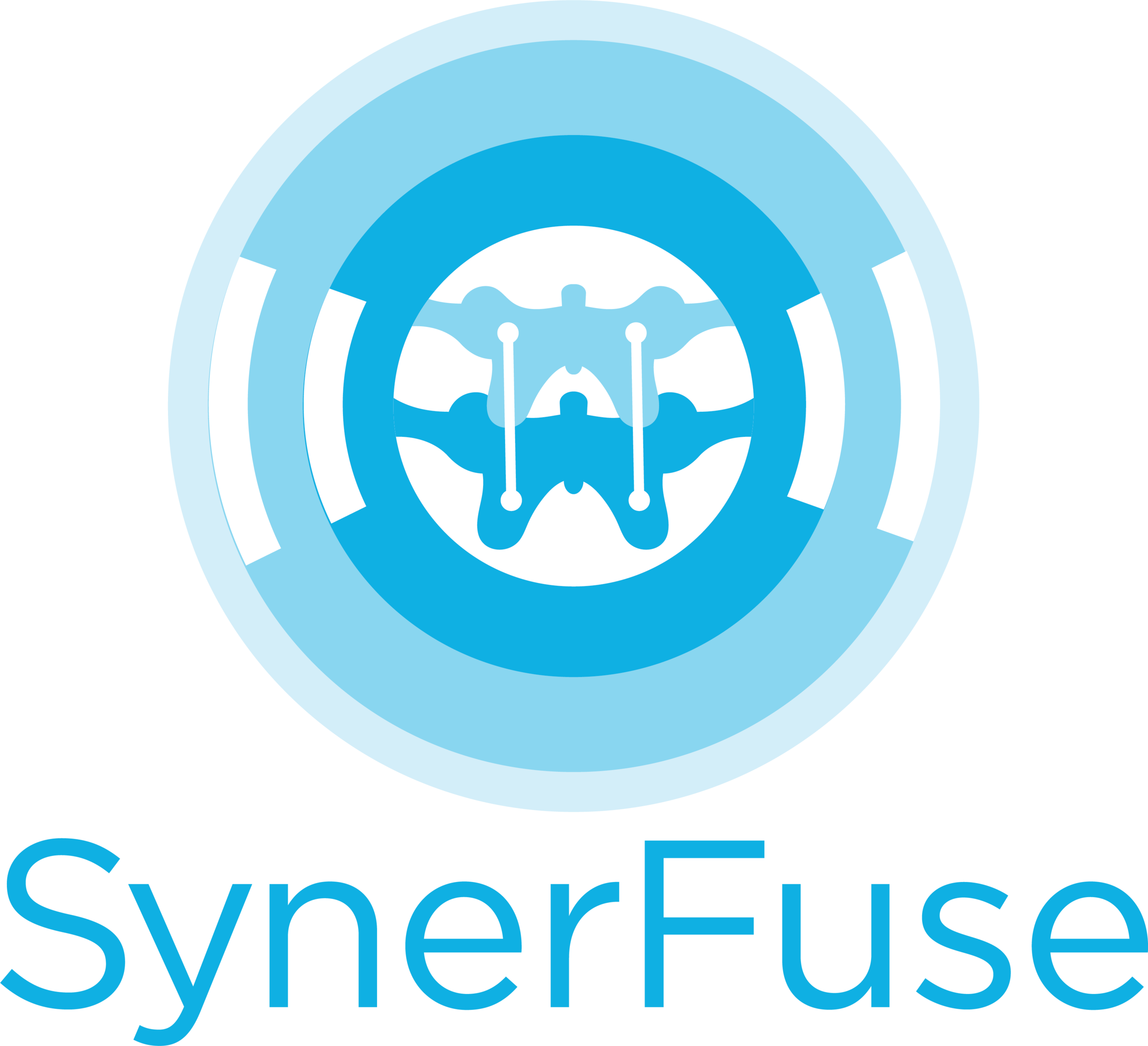 SynerFuse.png