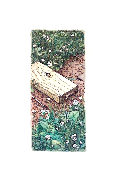 West & Hargett: Sidewalk, pen & ink and watercolor on paper, 5.5 x 8.5 in, 2016