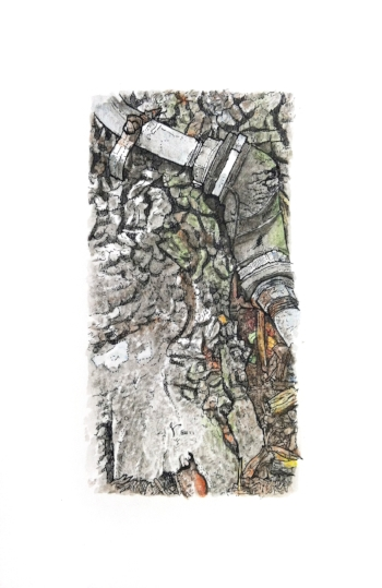 Nash Square: Tree Root , pen & ink and watercolor on paper, 5.5 x 8.5 in, 2016