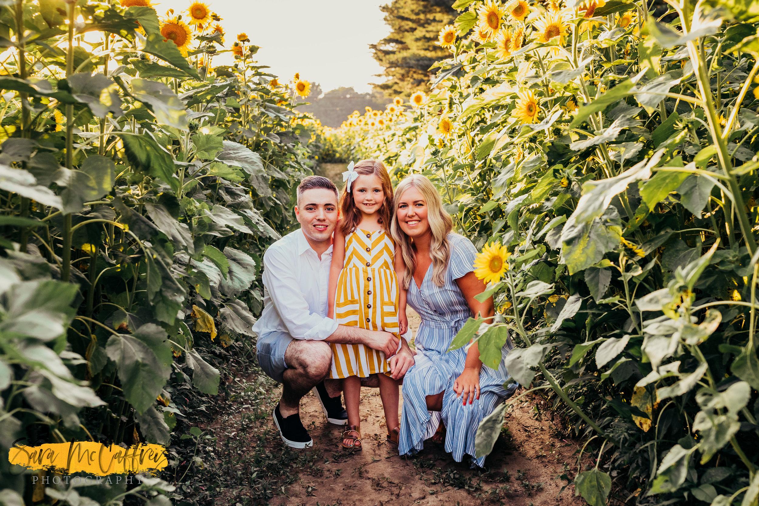 Sunflower Mini Sessions Summer 2019