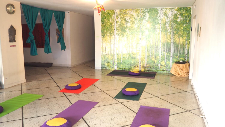 Yoga internships practice teaching yoga flying tree 3.JPG