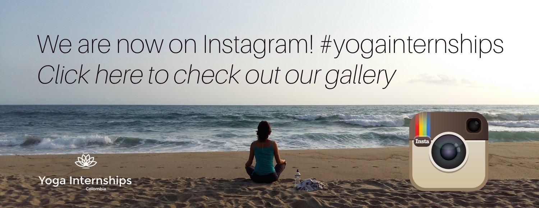 yoga internships work yoga teaching Medellín Colombia South America instagram
