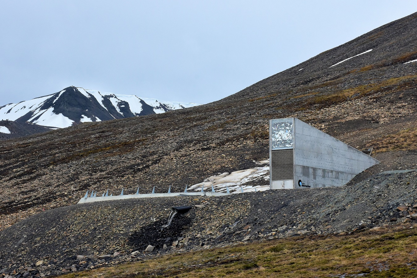 Like a modern entrance to a mysterious mountain cave, the access to the Global Seed Vault, which contains the world's emergency seed supply for agricultural crops, stands forlorn half way up an isolated mountainside on the island of Spitsbergen in Norway's high arctic. Above the entrance the architect installed a piece of artwork consisting of triangular pieces of metal at different angles. The art catches the natural light and allows the vault to be seen from a great distance.