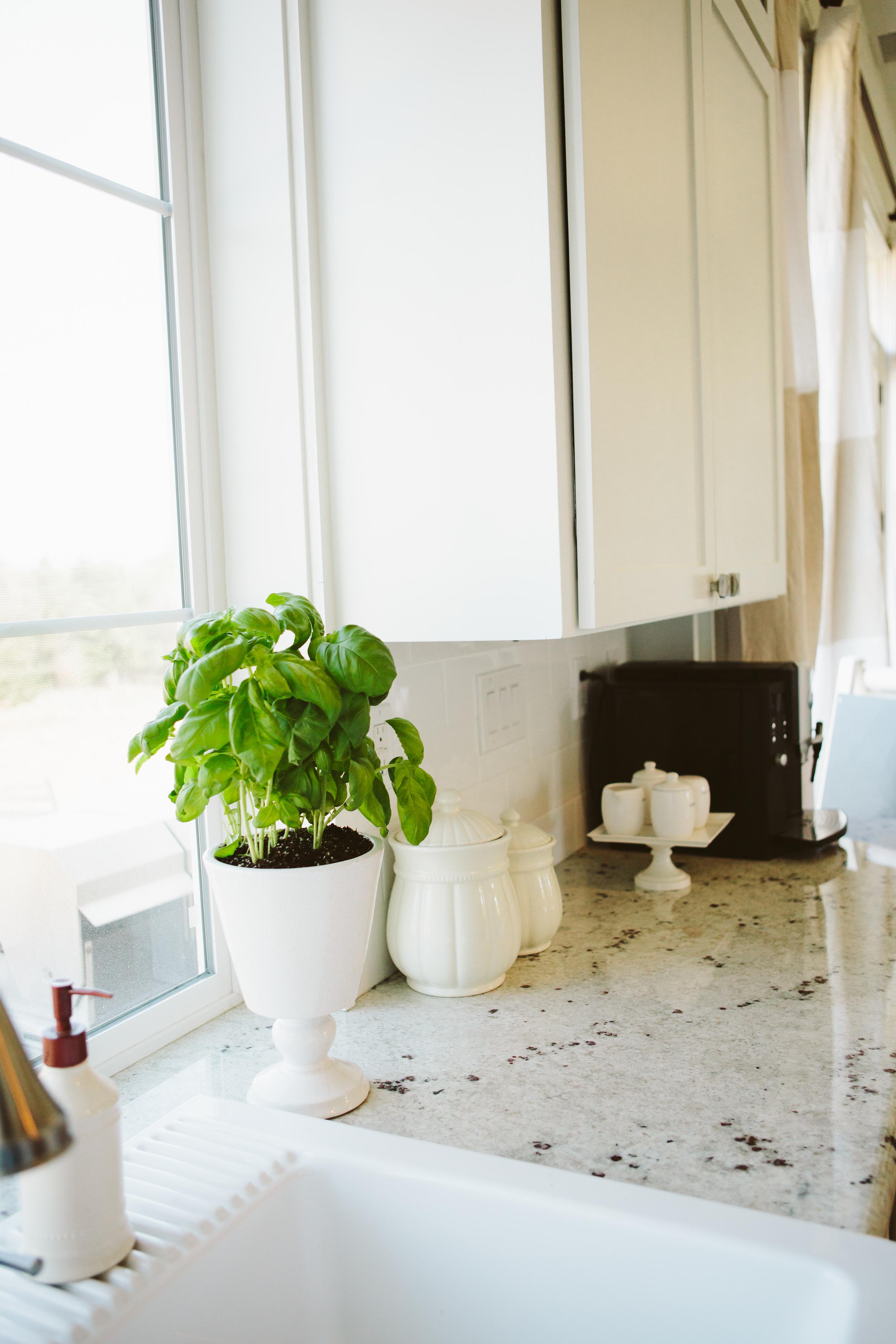 allure kitchen-65.jpg