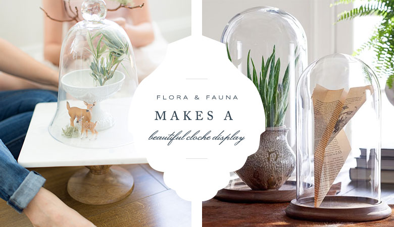 Glass Cloches from Pottery Barn