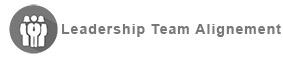 https://chris-locke-xklt.squarespace.com/leadership-team-alignment