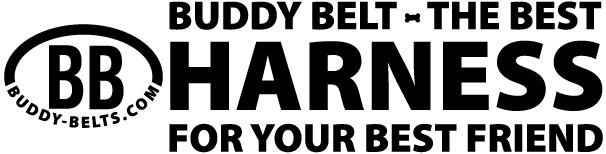 BB-logo-header-for-website.jpg