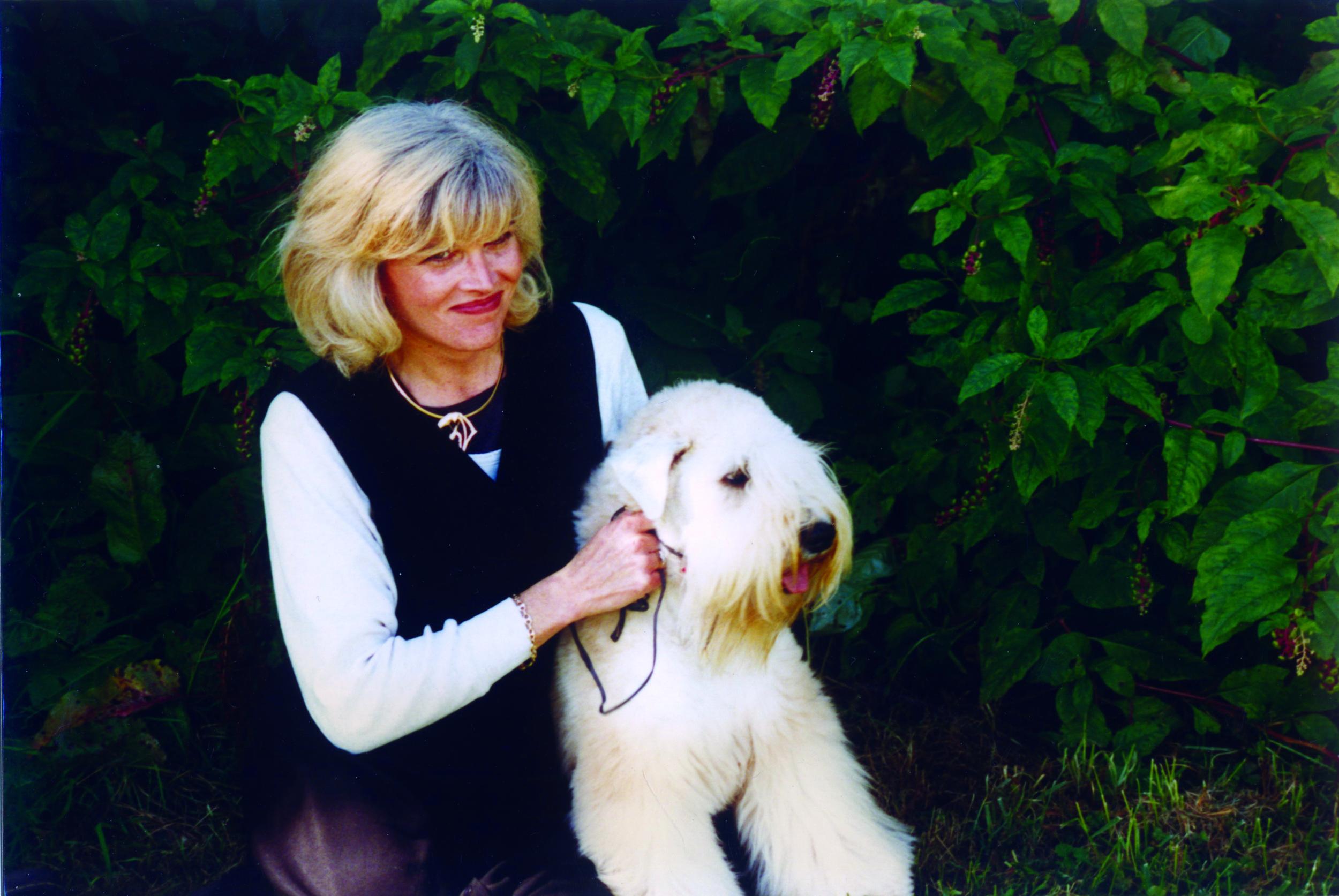 Yorkville, Dog Daycare, Grooming, Groom, Tire Biter, Playcare, Dog Walking, Kennel Free, Boarding, Toronto, Nancy, Wheaton