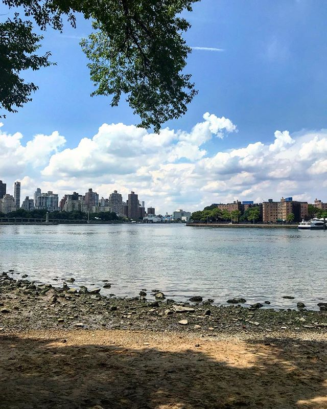 Hallet's Cove Beach along with Socrates Sculpture Park were illegal dumping sites up until the mid 1980s. Blackwell Island Lighthouse can be seen to the left and Astoria Houses to the right. . . . #nyc #newyork #newyorkcity #eastriver #queens #astoria #blackwellislandlighthouse #astoriahouses #astoria #ravenswood #city #citylife #cityphotography #cityliving #nycphotography #urban #urbanism #urbanphotography #halletscove #halletscovebeach #water #beach #river #bluesky #homebodynetwork #socratessculpturepark #rooseveltisland #homebodynyc #homebody