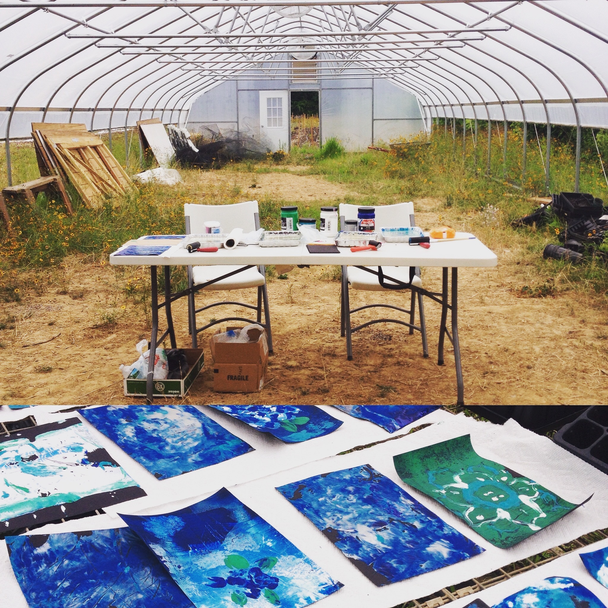 Mono-print Workshop at Capital City Farm in Trenton, NJ.