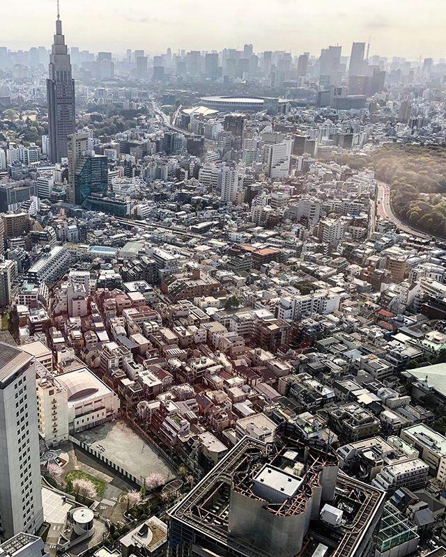 Tokyo highlights. #🇯🇵 #homesoon