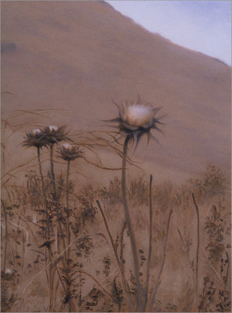 """Thistles, Hollister Ranch  8 x 6""""  oil on panel  2007"""