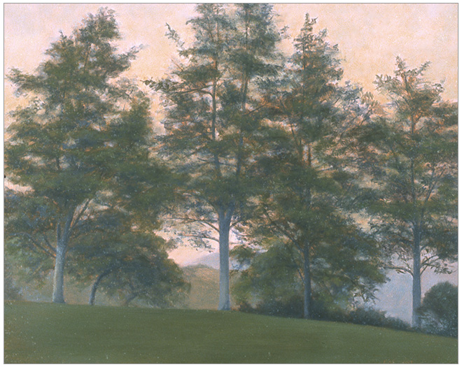 """Trees above the Arroyo  8 x 10""""  oil on panel  2004"""