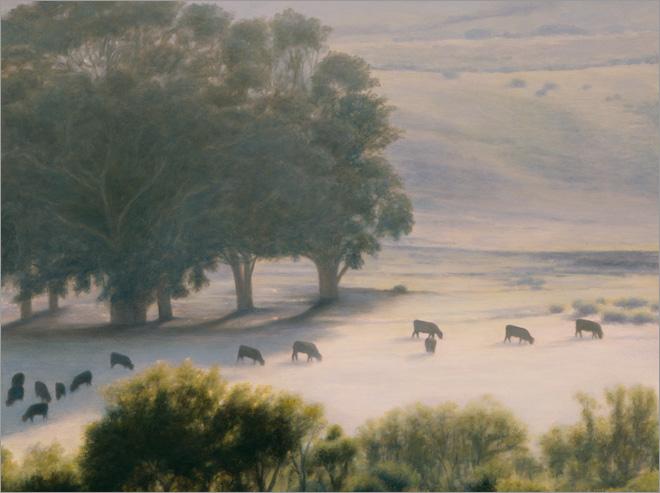 "Thirteen Cows Grazing, Hollister  12 x 16""  oil on panel  2009"