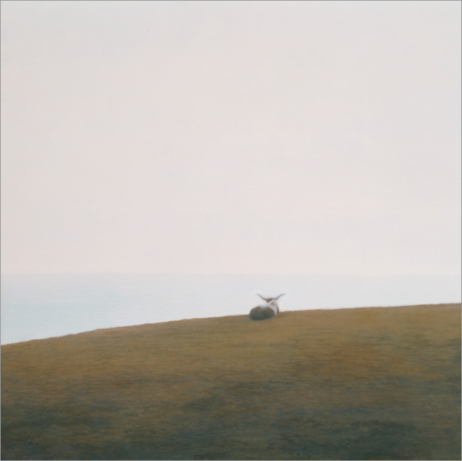 """Longhorn at Hollister  12 x 12""""  oil on panel  2009"""