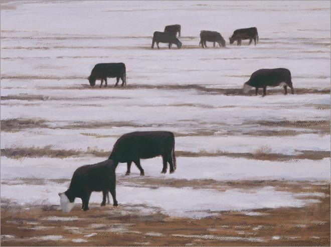 "Grazing Cows, Winter  6 x 8""  oil on linen  2008"