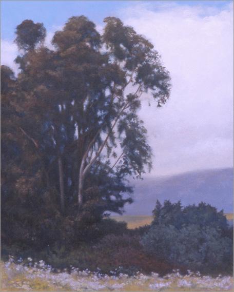 "Eucalyptus Tress, Douglas Preserve  24 x 18""  oil on canvas  2004"