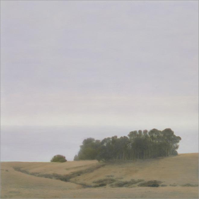 """Eucalyptus Grove  12 x 12""""  oil on panel  2009"""