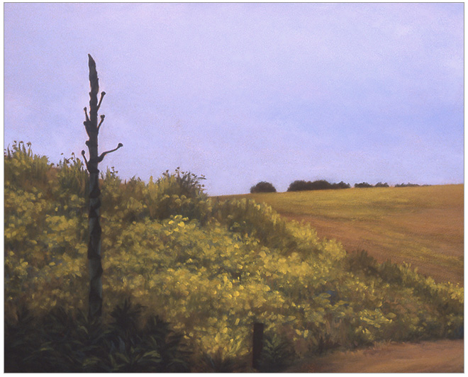 """Agave at Las Varas  8 x 10""""  oil on panel  2004"""