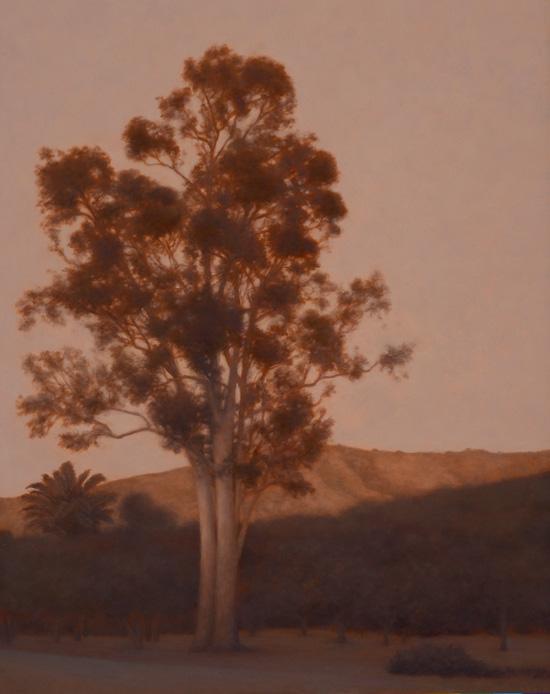 "Eucalyptus, Late Afternoon  20 x 16""  oil on panel  2011"
