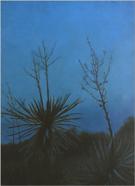 "Yuccas by Moonlight 24 x 18"" oil on linen 2004"