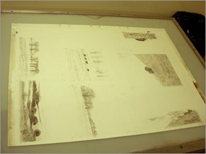 The first stage: 7 key drawings, using a lithograph pencil