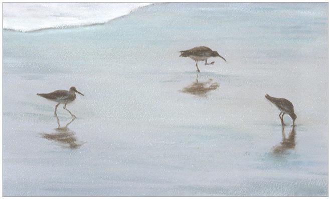 "Three Shoreline Birds  3 x 5""  oil on panel  2002"