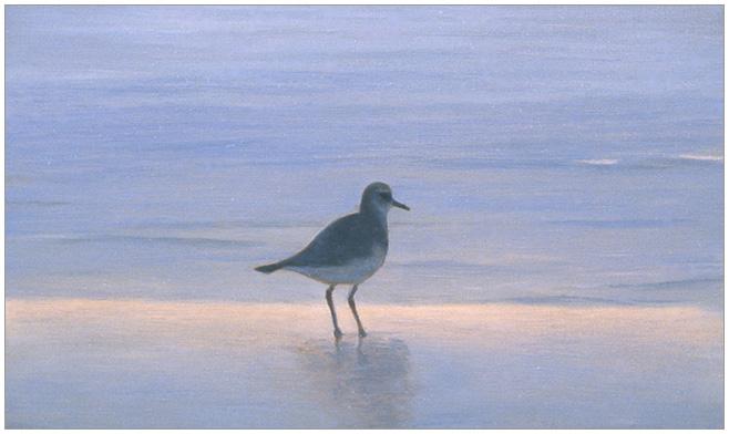 """Lone Sandpiper  3 x 5""""  oil on panel  2004"""