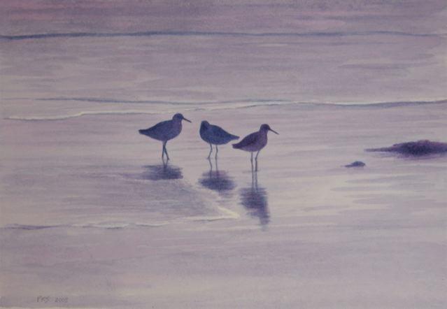 """Three Shorebirds 6x8"""" watercolor 2004"""