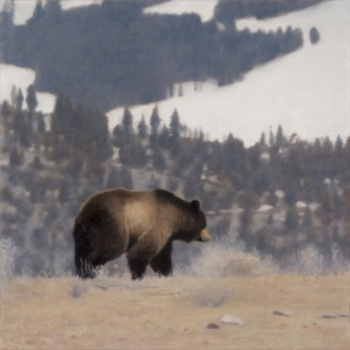 "Early Spring in Yellowstone,  oil on linen, 10 x 10"", 2018"