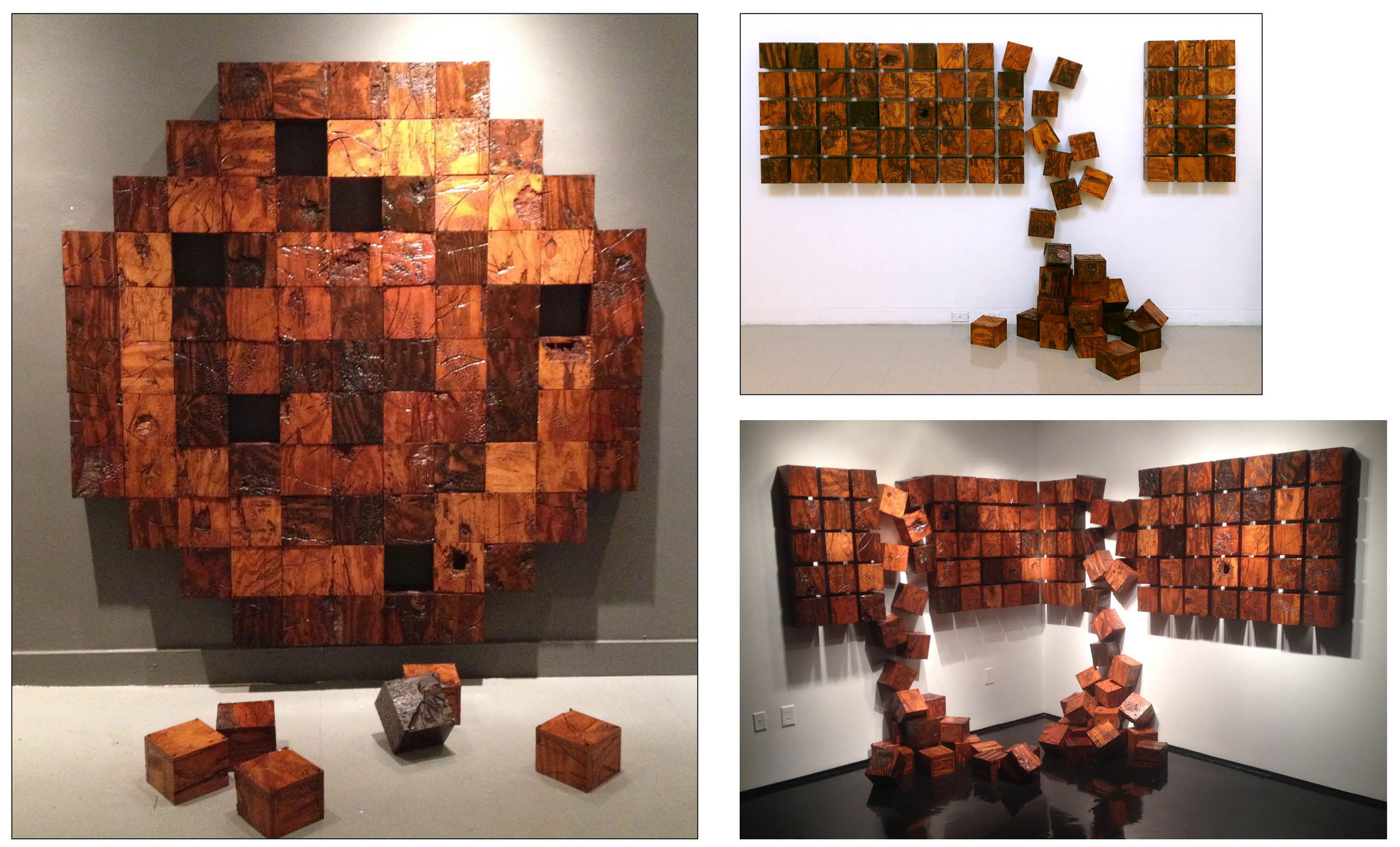 Fluctuations - Formation III, IV, & V  size varies based on formation  oil paint, shellac, plywood, masonry nails  2013-15