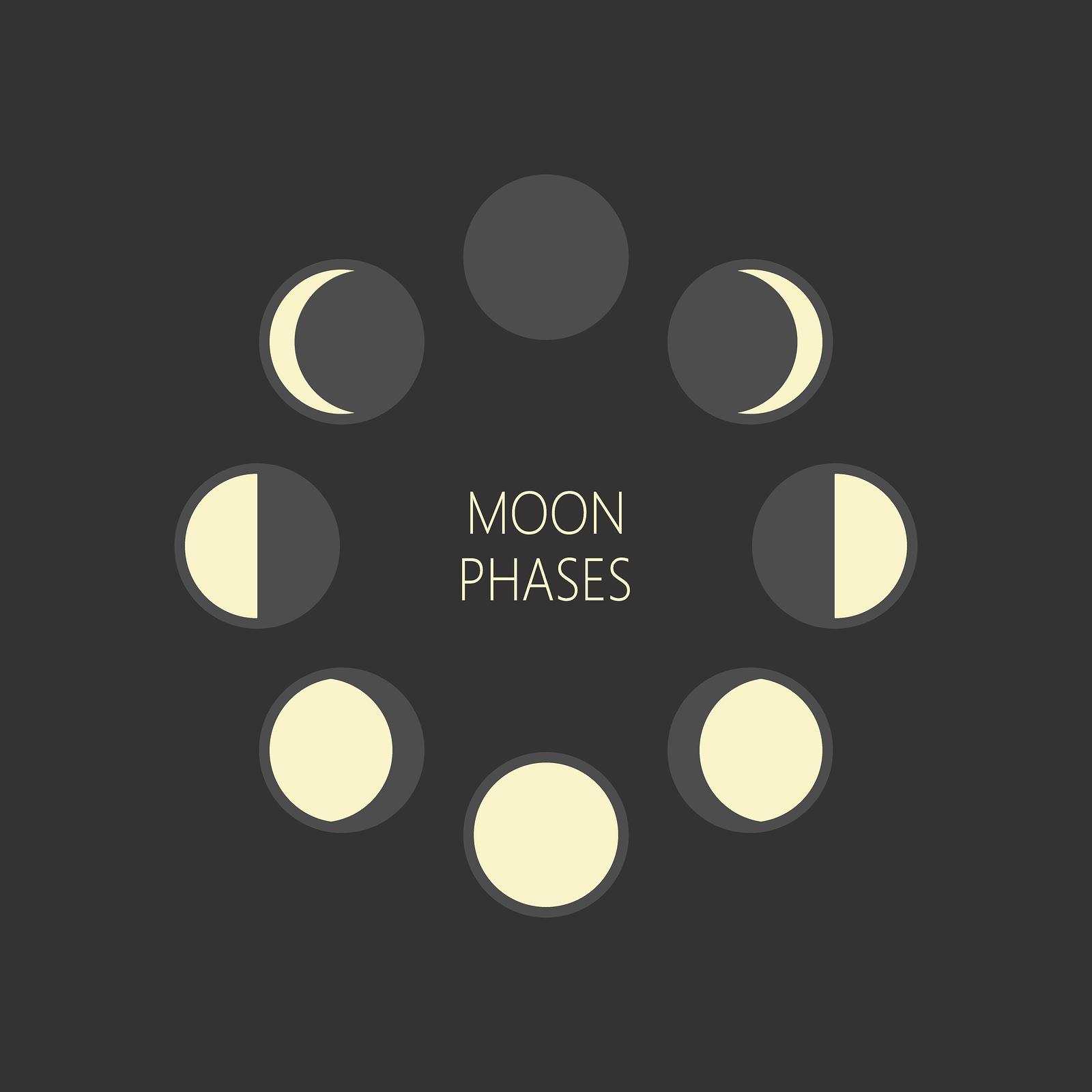 bigstock-Lunar-Phases-Round-Vector-Illu-262117867.jpg