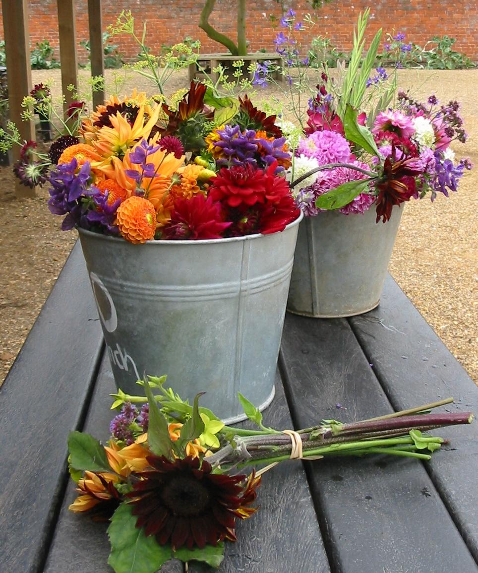 flower bunches.jpg