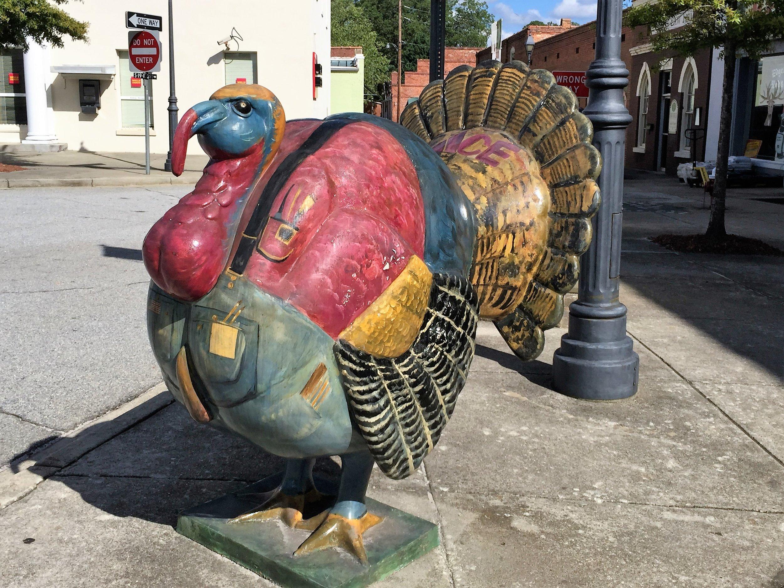Turkey3Edgefield.JPG