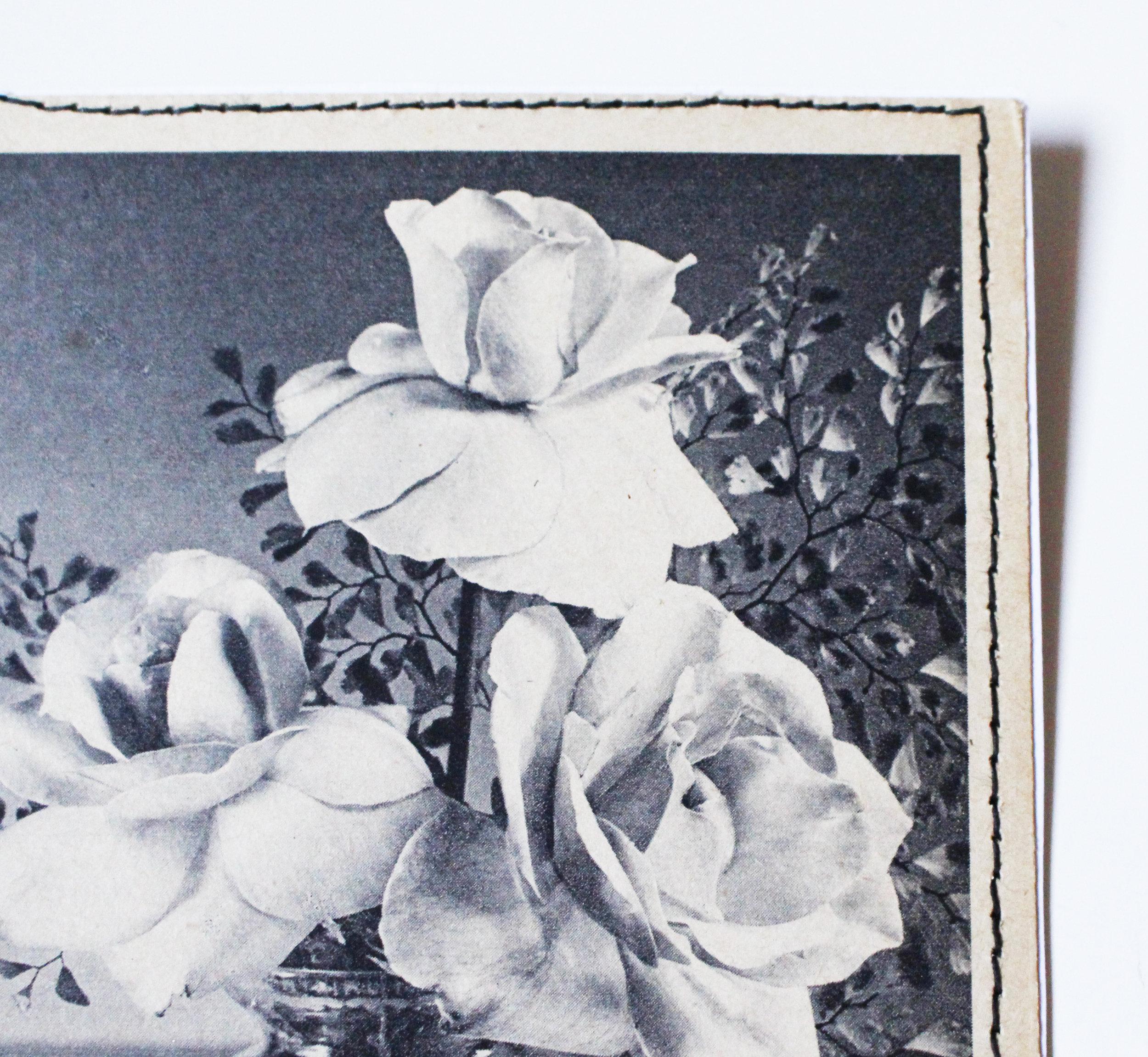 vintage card roses 3.JPG
