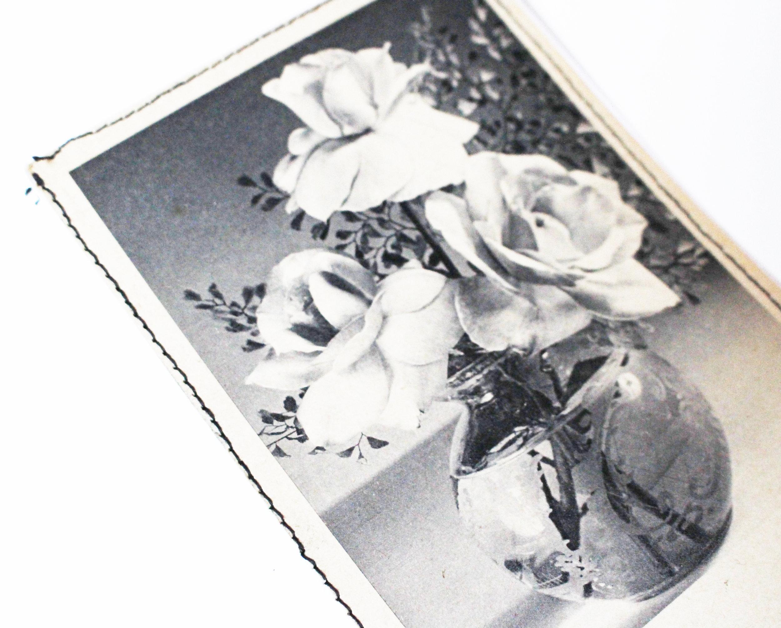 vintage card roses 4.JPG