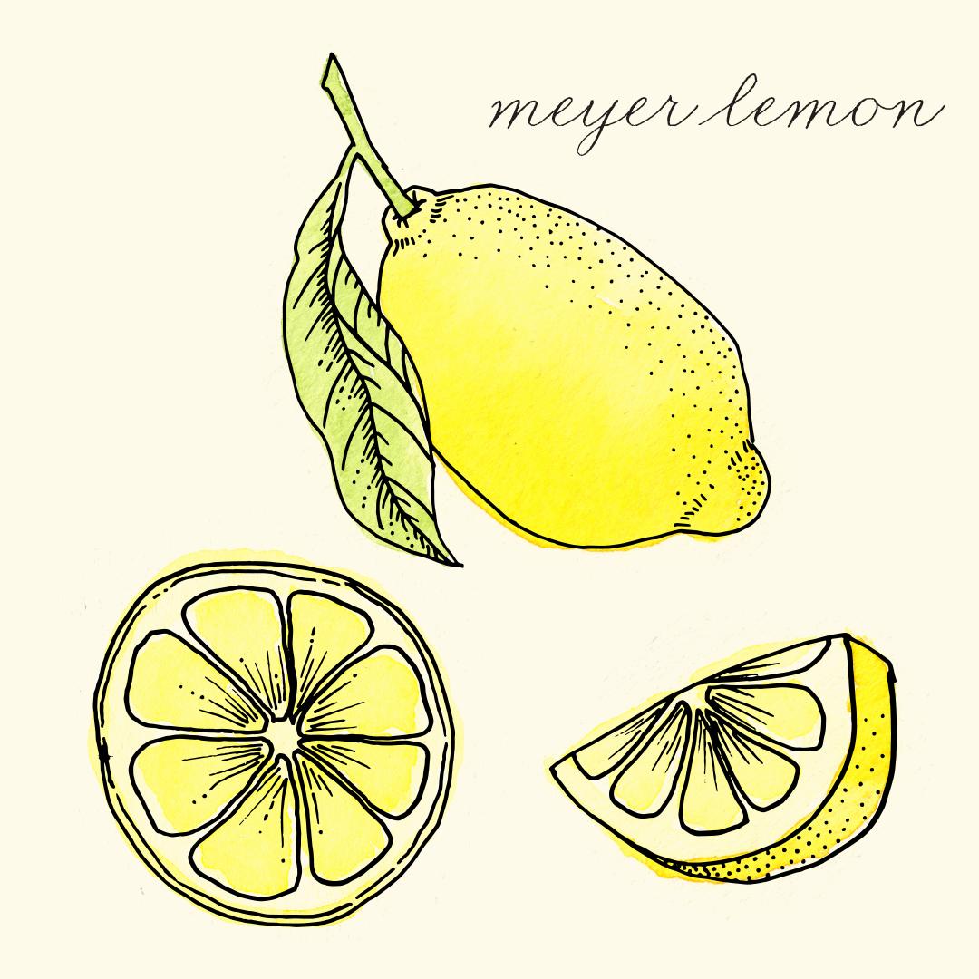 meyer_lemon.png
