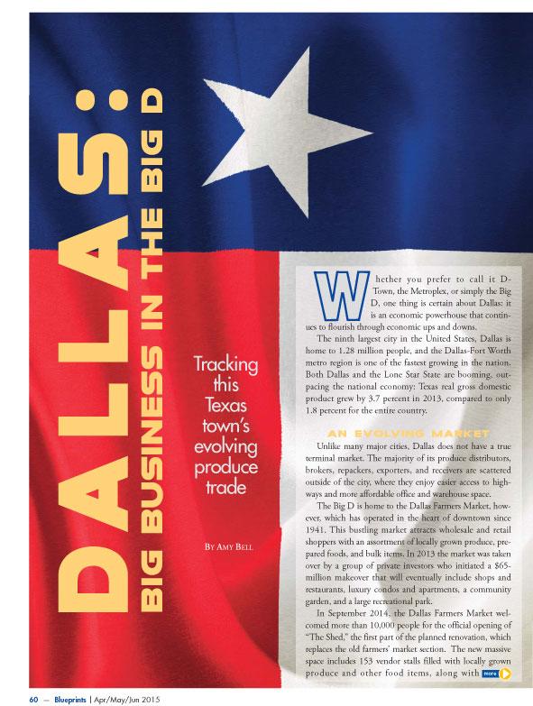 Copywriter-Dallas-Perspectives-Magazine1-WritePunch.jpg