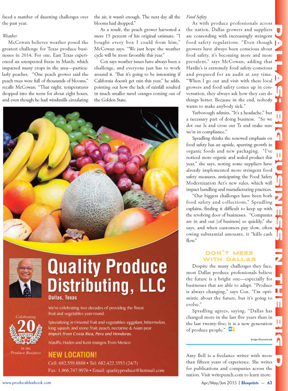 Copywriter-Dallas-Perspectives-Magazine3-WritePunch.jpg