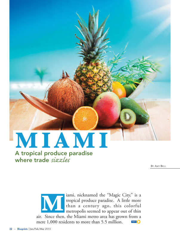 Copywriter-Miami-Perspectives-Magazine1-WritePunch.jpg