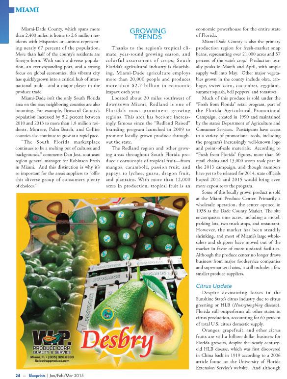 Copywriter-Miami-Perspectives-Magazine2-WritePunch.jpg