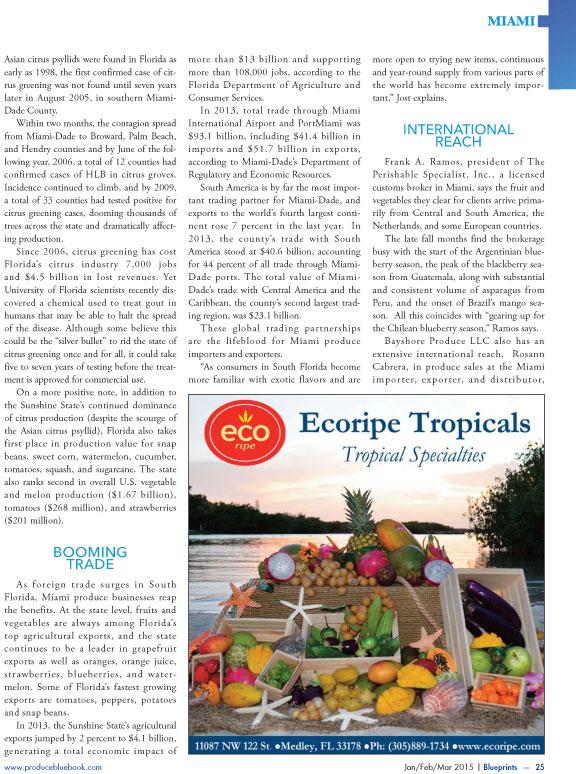 Copywriter-Miami-Perspectives-Magazine3-WritePunch.jpg
