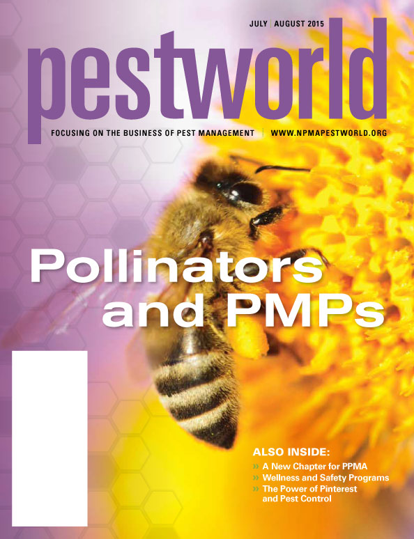 Bees_pg1.jpg