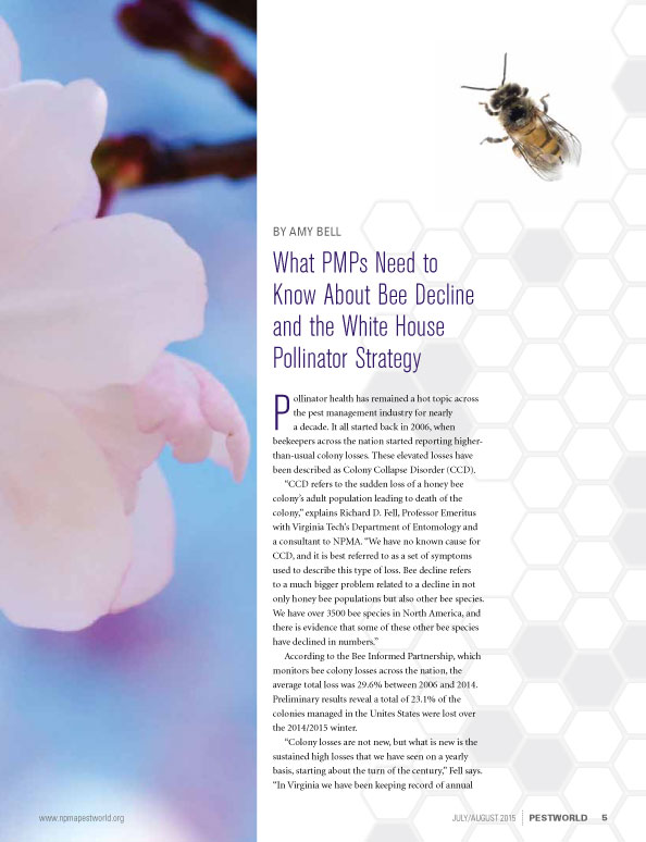 Bees_pg3.jpg