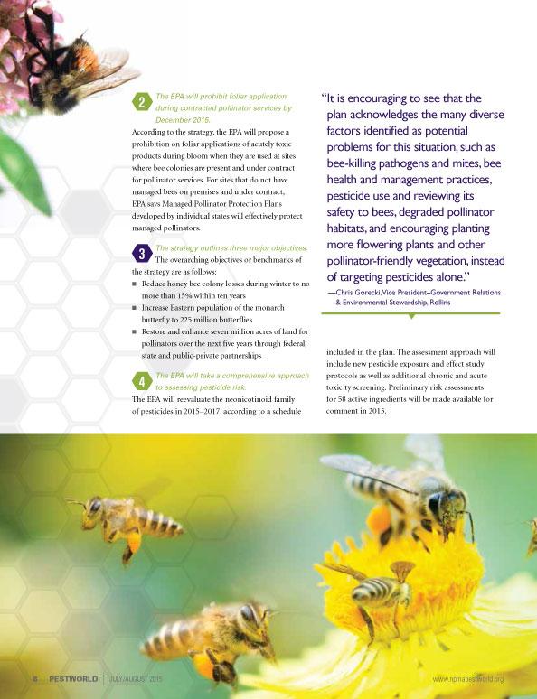 Bees_pg6.jpg